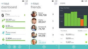 fitbit windows phone