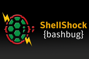 shellshock bug
