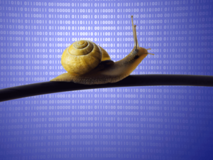 Slow binary snail.