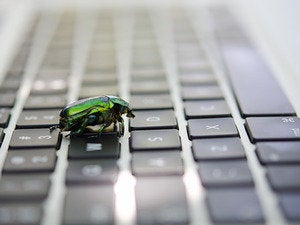 computer bug keyboard