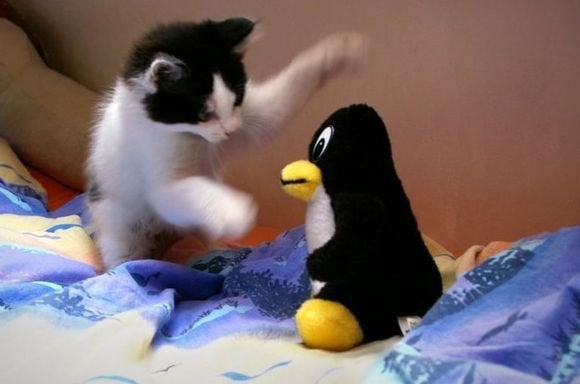linux attack
