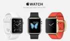 apple watch online store