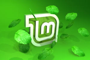 Linux Mint 18.1: Mostly smooth, but some sharp edges
